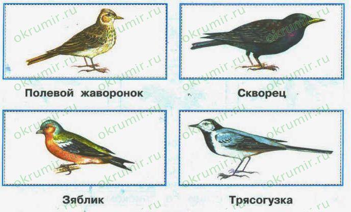Картинки названия о весне